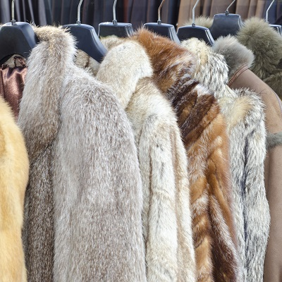 fur coats furrier